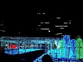 Tokyo Fantasia1