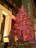 銀座・資生堂のクリスマスイルミネーション2009