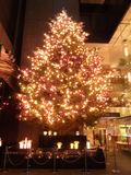 銀座ミキモトクリスマスツリー