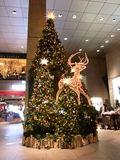 原宿クエストのクリスマスイルミネーション2010