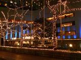 ヒルトン東京のクリスマスイルミネーション2010