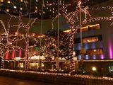 ヒルトン東京のクリスマスイルミネーション3