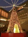 東京オペラシティのジャンボクリスマスツリー2009