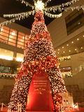東京オペラシティのクリスマスイルミネーション2010