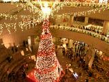 オペラシティのクリスマスイルミネーション3