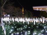 六本木ヒルズのクリスマスイルミネーション2010