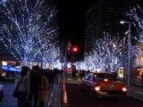 六本木ヒルズのクリスマスイルミネーション8