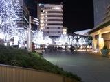 六本木ヒルズのクリスマスイルミネーション2009
