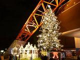 東京タワーのクリスマス1