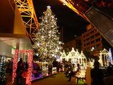 東京タワーのクリスマス2