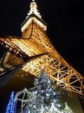 東京タワーのクリスマス3