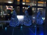 サザンテラスのクリスマスイルミネーション2