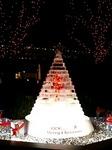 六本木ヒルズ氷のクリスマスツリー