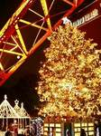 東京タワーのクリスマスイルミネーション2006