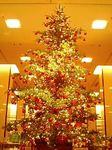 帝国ホテルのクリスマス《しあわせのチャリティーツリー》2006