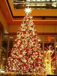 東京・丸ビルのクリスマスツリー