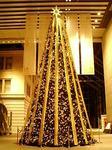 丸の内 MY PLAZA クリスマスツリー