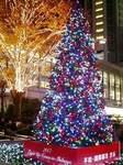 渋谷ハチ公前広場のクリスマスツリー2007