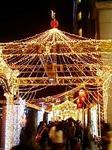 新宿タカシマヤ タイムズスクエアのクリスマスイルミネーション2008