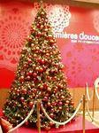 銀座プランタンのクリスマスイルミネーション2008
