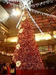 東京オペラシティのクリスマスイルミネーション2008