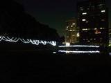 和田倉橋のイルミネーション2